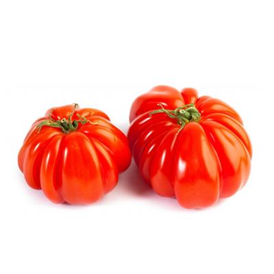Pomodoro-Costoluto-Extra