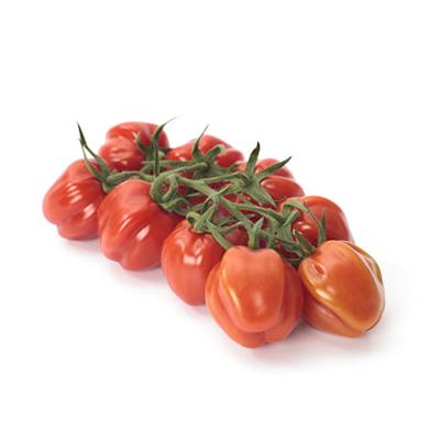 Pomodoro-Cubello