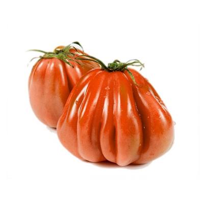 Pomodoro-Cuore-Di-Bue-Extra