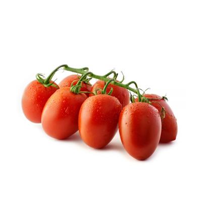 Pomodoro-Datterino-Extra