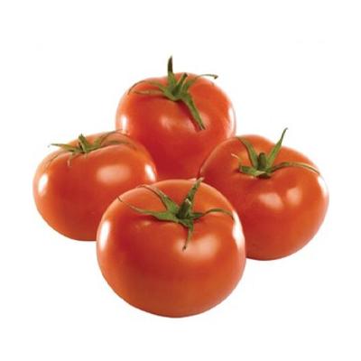 Pomodoro-Insalataro