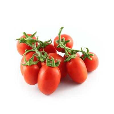 Pomodoro-Pixel