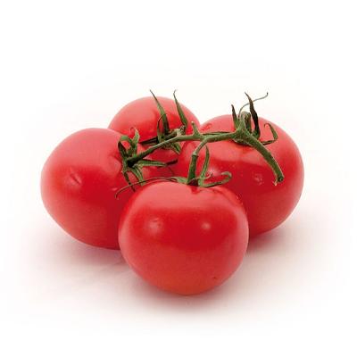 Pomodoro-Ramato-Extra