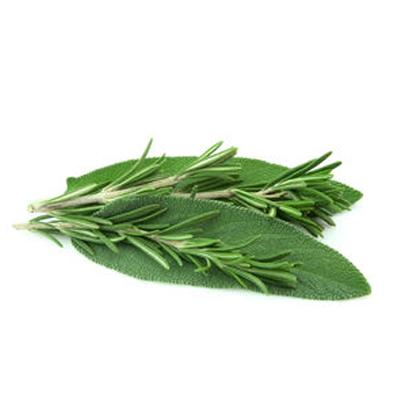 Salvia-E-Rosmarino-Mix-Vaschetta