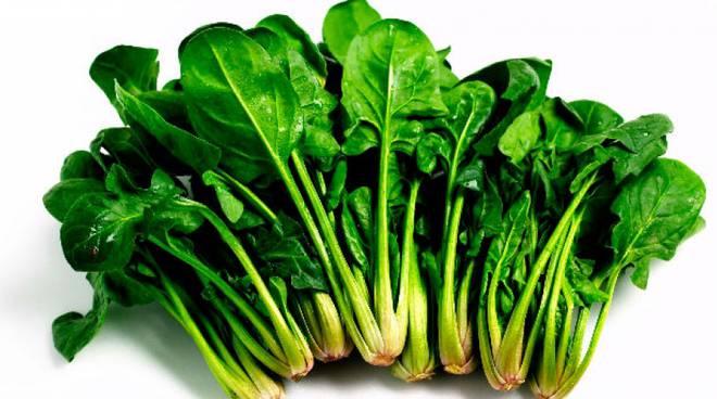Spinaci-Cassa